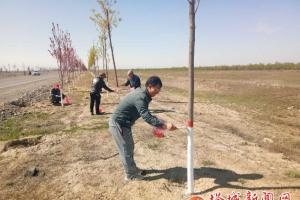 爱心刷树绿化家园