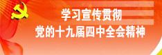 學(xue)習宣傳貫(guan)徹十九(jiu)屆(jie)四(si)中全(quan)會(hui)精(jing)神